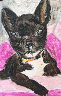 Hund, Portrait, Tiere, Zeichnungen