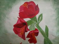 Rot, Blume, Amaryllis, Malerei