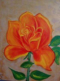 Rose, Blumen, Orange, Malerei