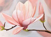Magnolien, Ölmalerei, Aprikose, Blumen