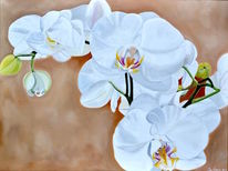 White orchidee, Fotorealismus, Blumen, Ölmalerei