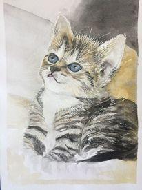 Aquarellmalerei, Katze, Aquarell