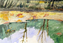 Natur, Wasser, Landschaft, Laub