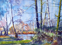 Natur, Baum, Landschaft, Waldsee