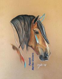 Pferde, Kreide, Reiten, Portrait
