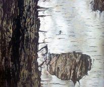Landschaft, Realismus, Stamm, Wald