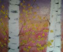 Baum, Birken, Moor, Heide