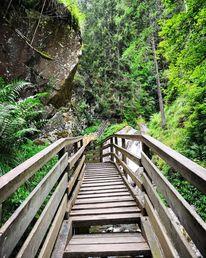 Natur, Wasserfall, Wald, Fotografie