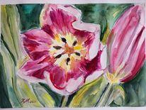 Rosa, Frühling, Tulpen, Aquarell