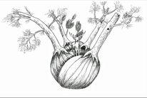 Wald, Gemüse, Baum, Knollenfenchel