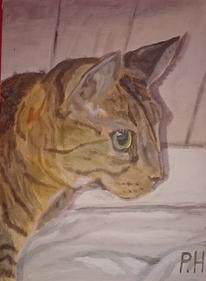 Katze, Wand, Augen, Malerei