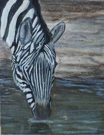 Zebra, Schwarz, Steppe, Malerei