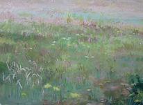 Blumen, Heide, Landschaft, Senne