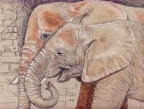 Elefant, Rot, Berge, Rüssel