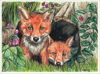 Tiere, Fuchs, Natur, Mischtechnik