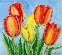 Tulpen, Natur, Aquarellmalerei, Aquarell