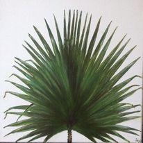 Fächerpalmenblatt, Grün, Blätter, Botanik