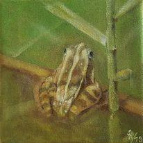 Frosch, Grün, Malerei, Tiere