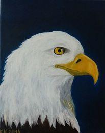 Adler, Tiere, Portrait, Malerei