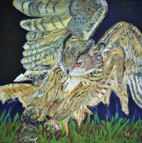 Uhu, Vogel, Nachtvogel, Beutefang