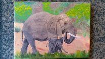 Baby elefant, Tiere, Natur, Elefant
