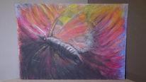 Pastellmalerei, Schmetterling, Bunte fantasie, Zeichnungen