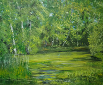Frosch, Zwillbrocker venn, Teich, Sumpf