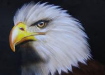 Adler, Airbrush, Malerei