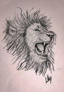 Schwarz weiß, Kohlezeichnung, Zeichnung, Löwe