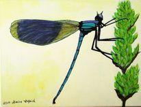 Insekten, Libelle, Tiere, Malerei