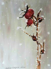 Schnee, Winter, Pflanzen, Hagebutte