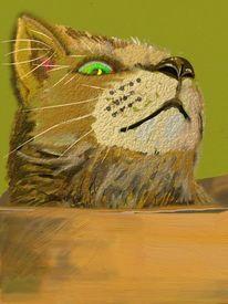 Hochglanzposter, Katze, Karton, Digitale kunst