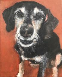 Hund, Hundeportrait, Tierportrait, Malerei