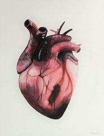Herz, Anatomie, Figural, Rosa