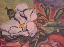 Natur, Blumen, Magnolien, Zeichnung