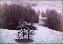 Natur, Schnee, Baum, Landschaft