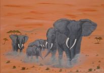 Natur, Tiere, Afrika, Landschaft