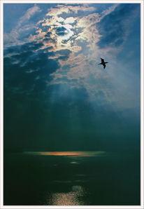 Licht, Bunt, Natur, Meer