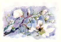 Pflanzen, Baum, Frühling, Blumen