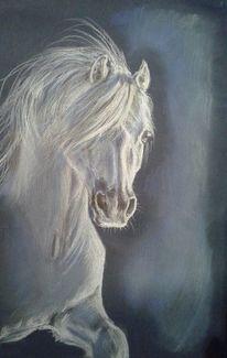 Pastellmalerei, Pferde, Zeichnung, Zeichnungen