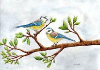 Singvogel, Vogel, Blaumeisen, Baum