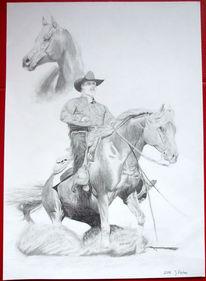 Western, Arabisches vollblut, Pferde, Zeichnung