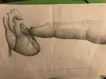 Herz, Berührung, Weiß, Bleistiftzeichnung