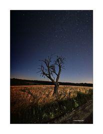 Nacht, Landschaft, Stelle, Blau