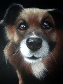 Hund, Hundeliebe, Pastellmalerei, Zeichnungen