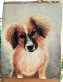 Hund, Pastells, Liebe, Malerei