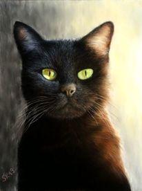 Katze, Liebe, Pastellmalerei, Zeichnung