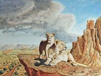 Wolken, Löwe, Felsen, Savanne
