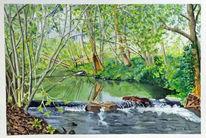 Bach, Fluss, Reflexion, Aquarellmalerei