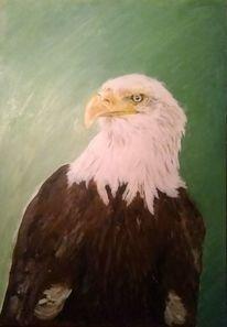 Adler, Acrylmalerei, Tiere, Vogel